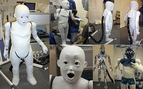 CB2 - Bambino Robot