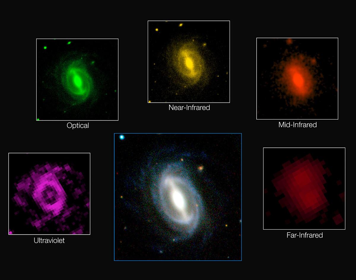 Immagine della Galassia da GAMA.