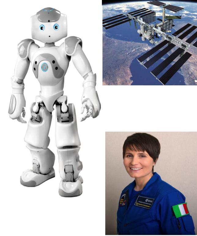 Nao Stazione Spaziale Internazionale